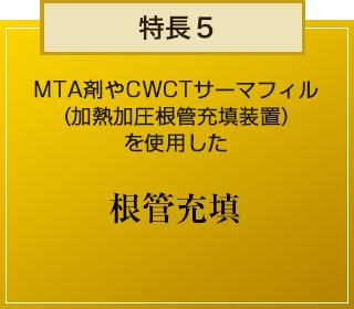 特徴5 MTA剤やCWCTサーマフィル (加熱加圧根管充填装置)を使用した 根管充填